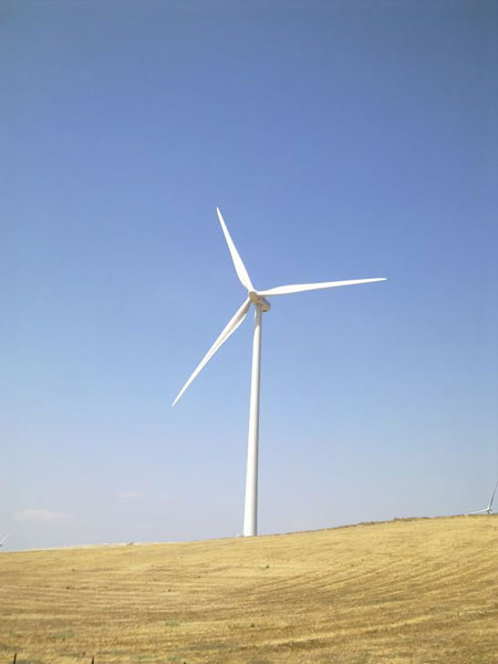 A stately wind turbine