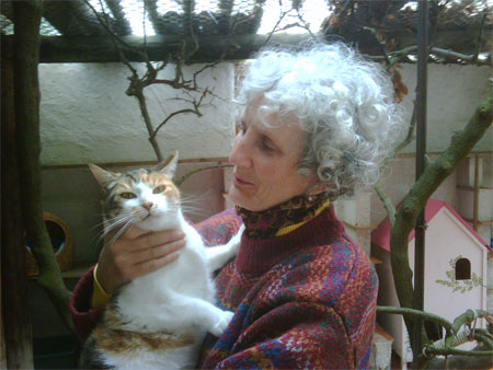 Minou the cat to Devon