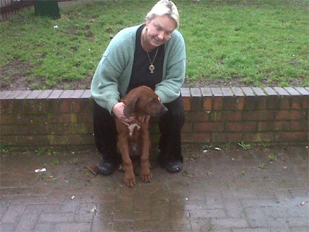 Rhodesian Ridgeback dog Max travels from the UK to Spain with Animalcouriers