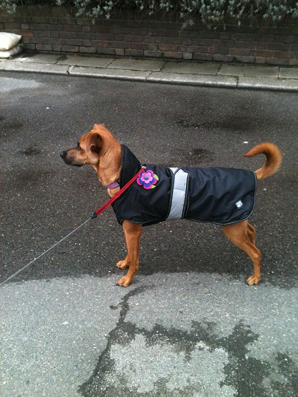 Nela's smart coat for town