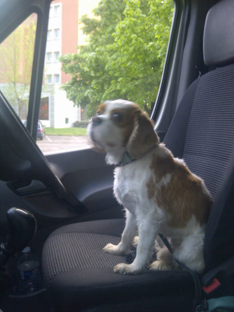 He'd prefer to be travelling up front!