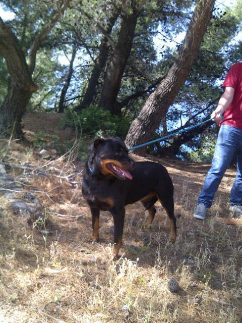 Roxy taking in her surroundings