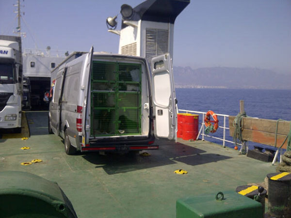 Our top-deck position, with a refreshing sea breeze