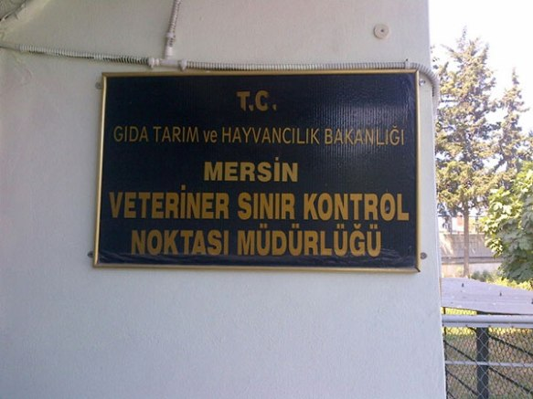 The veterinary department at Mersin port, staffed by kind and helpful people