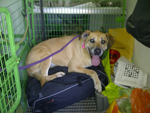 Maria says, I don't think I'll bother going back to my bedroom, this suitcase looks so comfy!