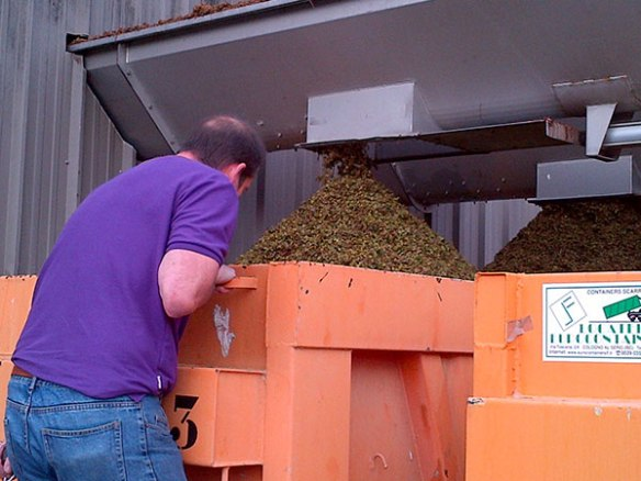 …The stalks come out here, while the juice and flesh join the other deliveries, and the wine-making process begins
