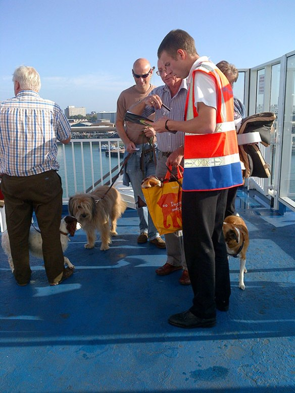 At the check-in for the onboard kennels on the ferry. There are 53 dogs on this ferry crossing!