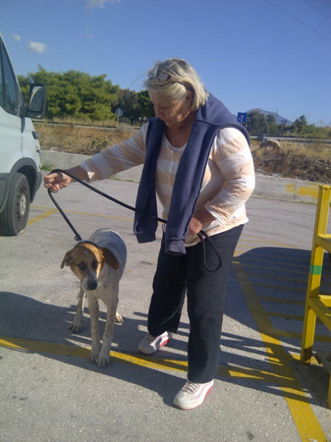 This is Pepper with Betty. Pepper, together with Treacle (below) and two other dogs were found as strays on the beach.