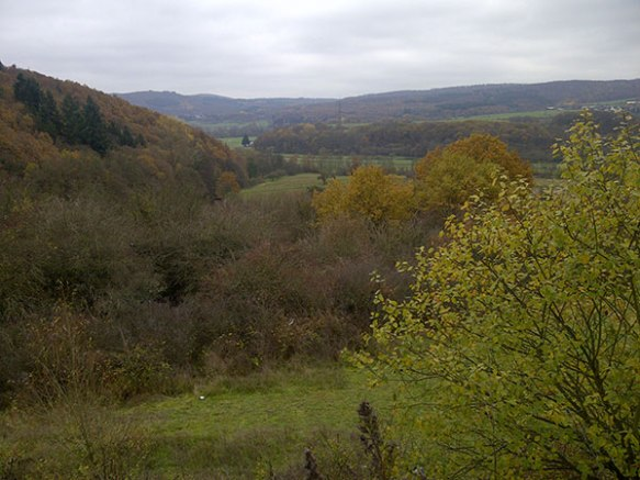 Beautiful autumnal colours in the German hills
