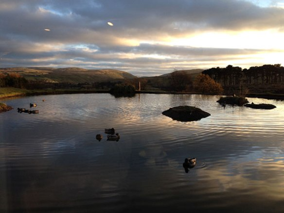 A pond in Westmorland, seen on our way north, catches the evening sun