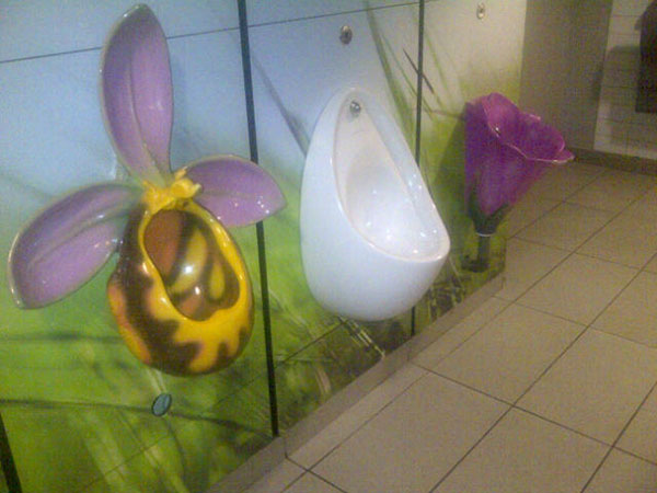 Can't resist including this photo of the gents at Dobbies garden centre on the M20 - courier M was quite taken with them!
