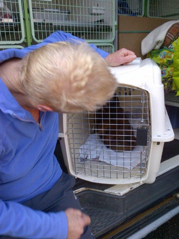 Sheila says 'au revoir' to Miski