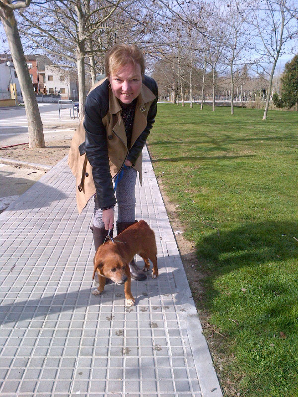 This is Deborah with Pandora, one of two rescue dogs from a pound in northern Spain that does a great job of finding new homes for dogs rescued from the streets.