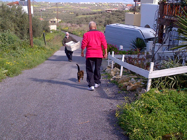 Sheila and Miski walking down to the Animacouriers van to collect Cali