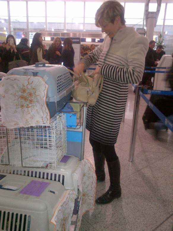 Cordelia from Nine Lives Greece was on hand to help