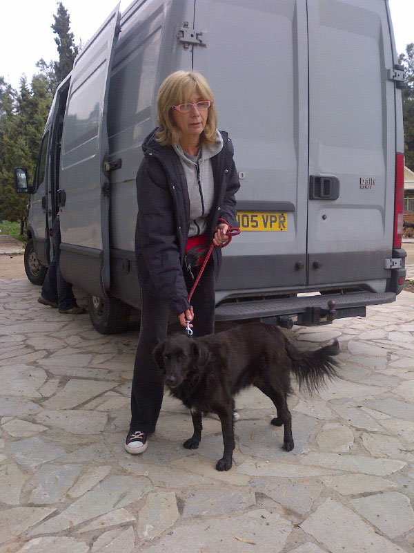 One of the dogs we were due to take was simply too big for the compartment in our van. So Millie, who was due to travel with us next month, had her trip brought forward. Kiki dashed to the vet for a pet passport while Millie got a wash and brushup. She's a lovely dog, quiet and good natured, with a pronounced limp. Martha (shown here with Millie) has been trying to rehome her for quite a while now.