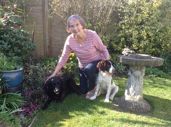 Milly (L) enjoying the English sunshine with her new owner and Spaniel chum (R)
