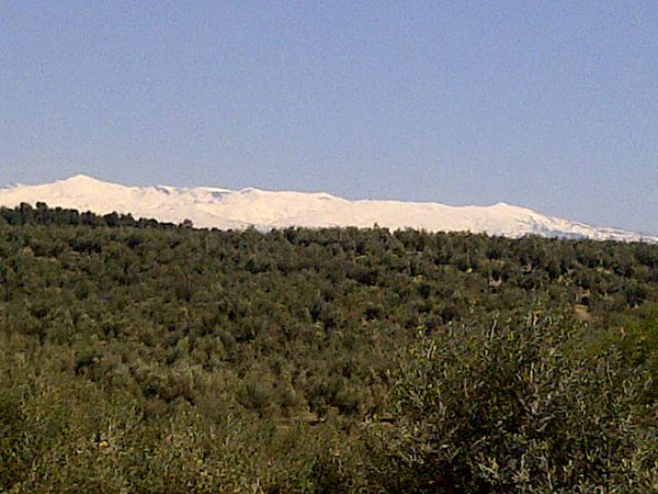 Fine view from the office window today as we drive through Sierra Nevada, heading north through Spain and towards France.
