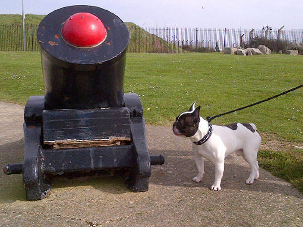 The history lesson continues as Coddy inspects a field howitzer