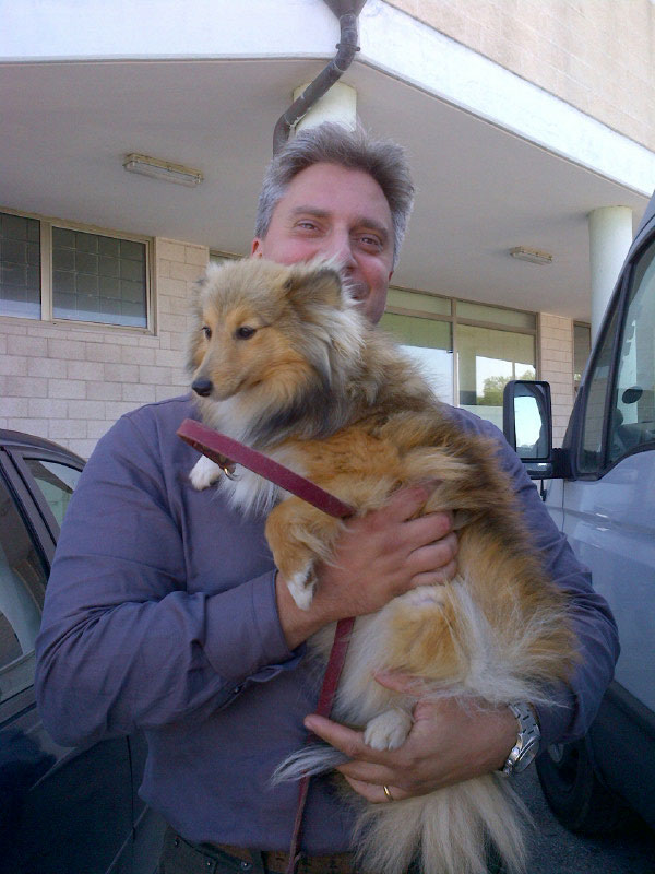 Big hugs for a Sheltie from Pierrefrancisco