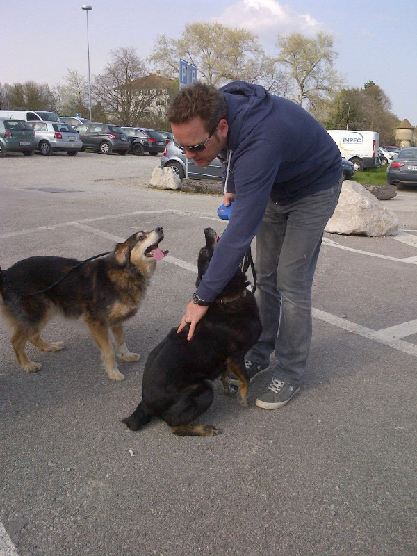 Daisy and Millie are delighted to be reunited with Joe in Switzerland