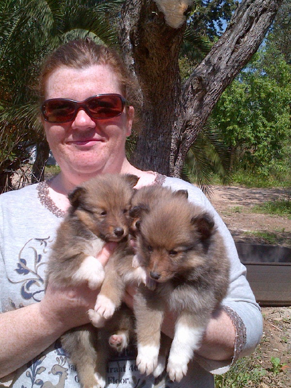 Rebecca with the pups, understandably very sad to be parting from her family