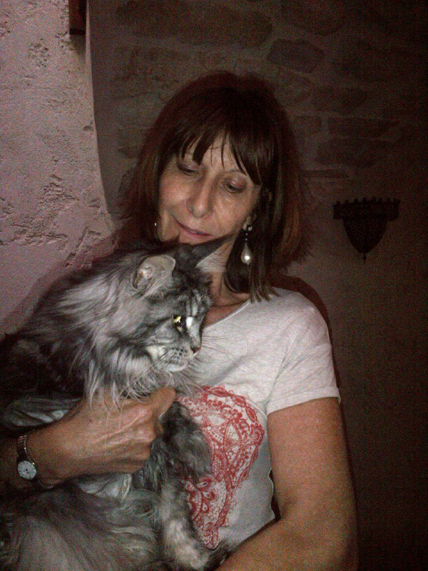 Freddie Mercury, a floofy Maine Coone, with Louisa when we arrived to collect the cats