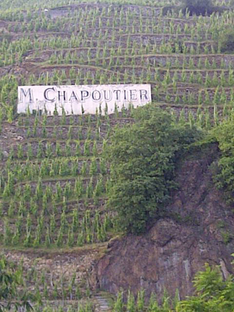 Some very steep vineyards in the Côtes du Rhône, where the hillsides are studded with the wine-growers' names. Given the incline, we can only imagine the grapes are cared for and harvested by hand, rather than by machine. We enjoyed our very own 'dégustation' of the local Côte-Rôtie to wash down our supper-time pizzas.
