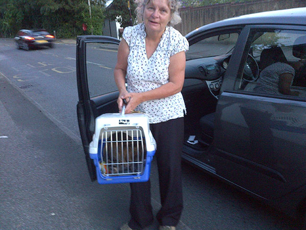 Uma being collected by Jo's mum