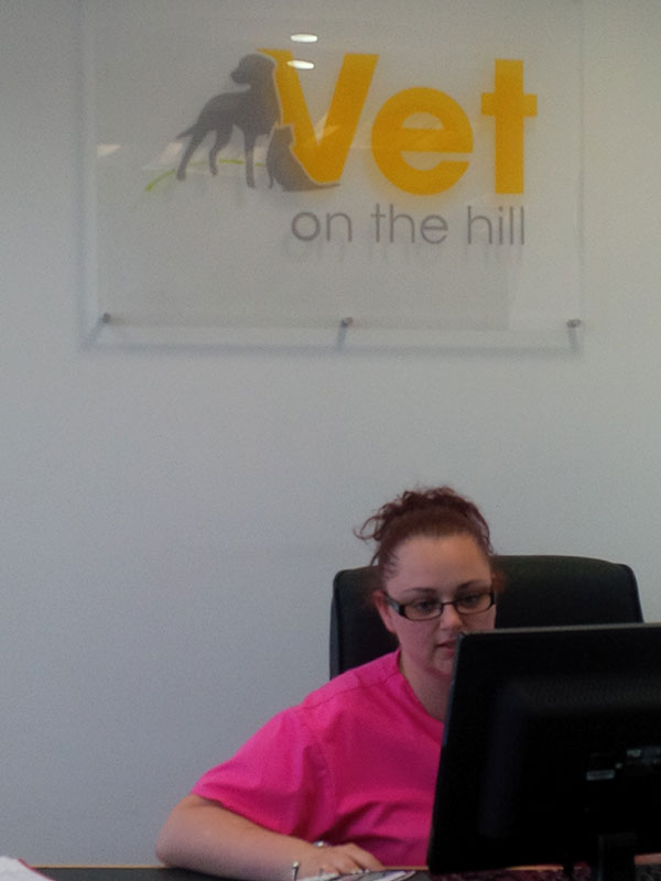Nurse-receptionist Becky hard at work at Vet on the Hill