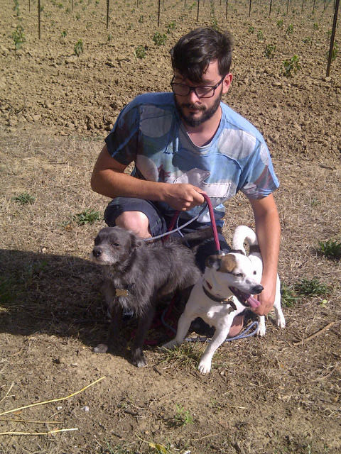 Alex joined us for a coffee and helped us walk the dogs. Here he is with Smokey and Bingo.