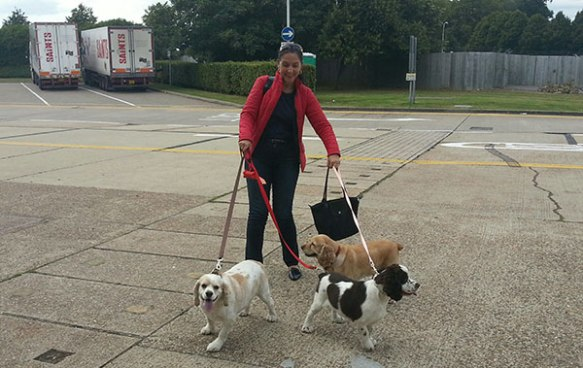 Dixie, Sasha and Vikki touch down in London
