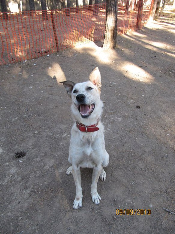 Stella smiles for the camera