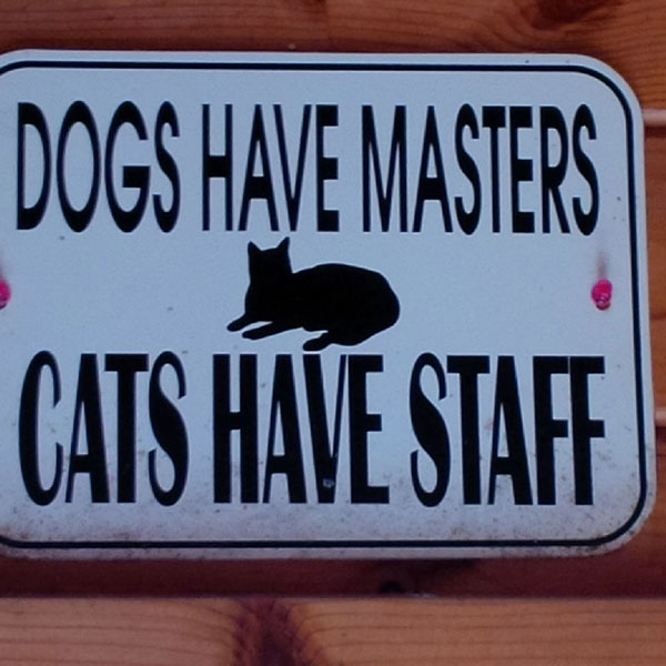 We love this sign at Barking Mad Kennels