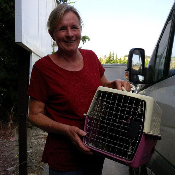 Louise brings us Jayne's cat Lucie