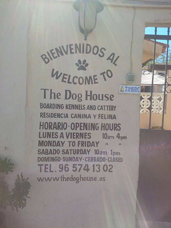 All about The Dog House