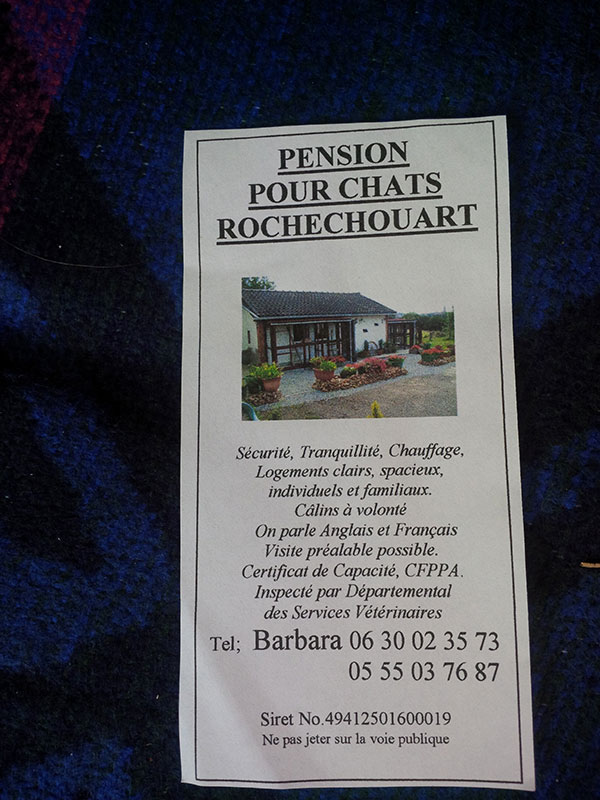 Barbara's lovely peaceful cattery at Rochechouart