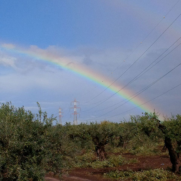 A rainbow heralds the start of the better weather