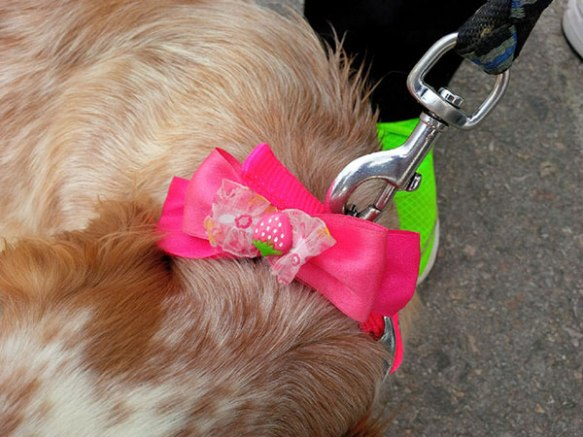 Nana's beautiful collar