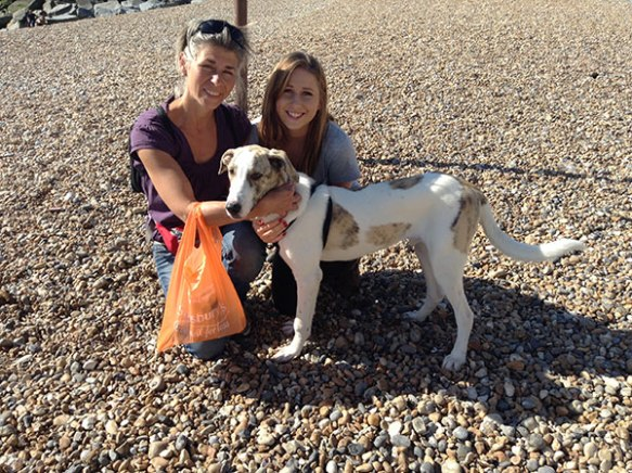 Sebastian recently travelled with us from the Filozoikos Shelter in Greece to a new home in the UK with Jenny. In accordance with TRACES, he was inspected by the AHVLA office on arrival, and was declared to be a perfect dog!