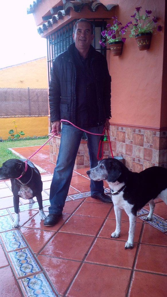 Wearing new leads, here are Rita (L) and Bob (R) with Miguel. He originally adopted the dogs in Northern Ireland and is now on his way back there, to Ballycastle.