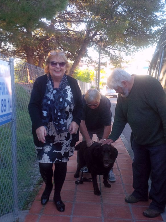 We caught up with Margaret and John and their Chocolate Lab Oscar who travelled with us as a pup from his breeder in France