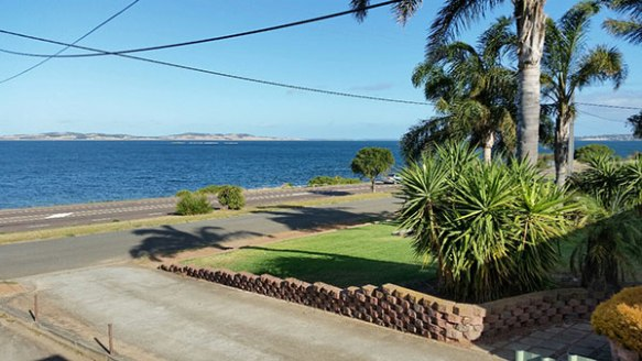 Debra battled through snow as she went back and forth to the vet in the UK to sort out the final paperwork and parasite treatments. Two weeks later it was wall-to-wall sunshine for everyone, with a wonderful sea view across Spencer Gulf