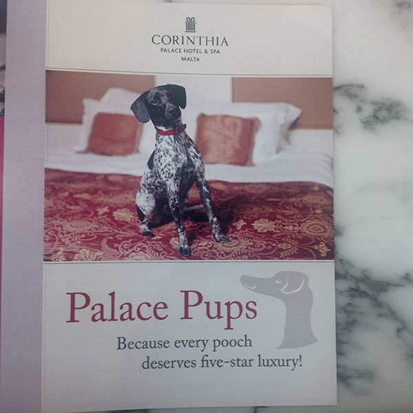 'Palace Pups' — the hotel's leaflet about its dog-friendly policy, which includes doggy room service; in-room bowls, beds, treats and toys; and walking, grooming and massage services!