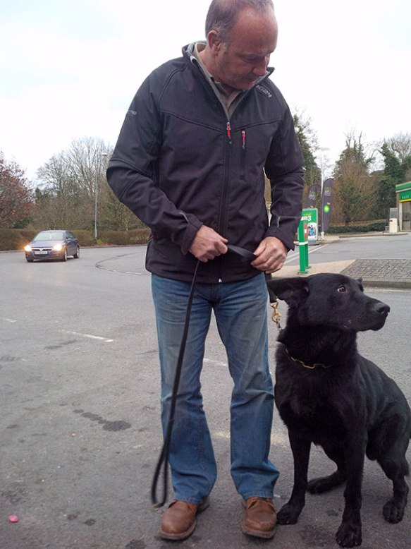 Handsome Odin is a little younger than Bibi. Len says that he very much followed Bibi's lead during training.
