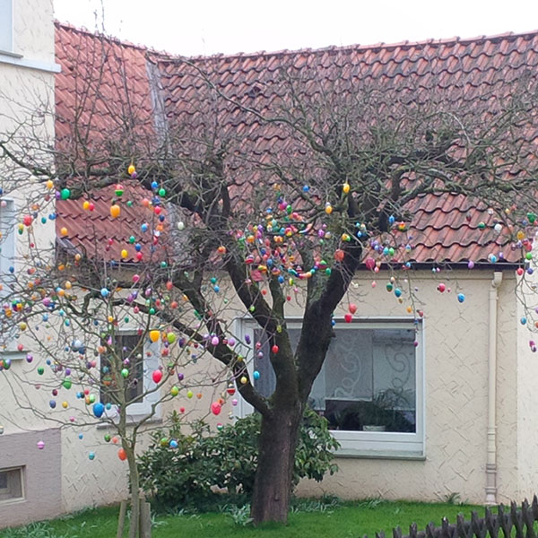 Like the Swiss, the Germans are also lucky enough to have Easter egg trees!