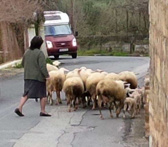 Traffic jam in the mountains