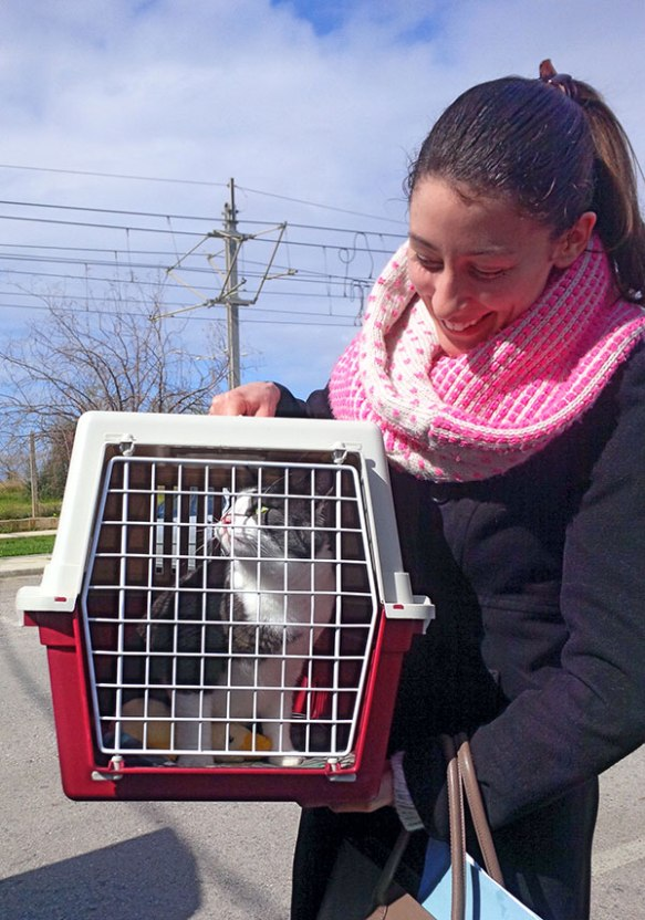 Lisa brings us her cat Dusty for the journey