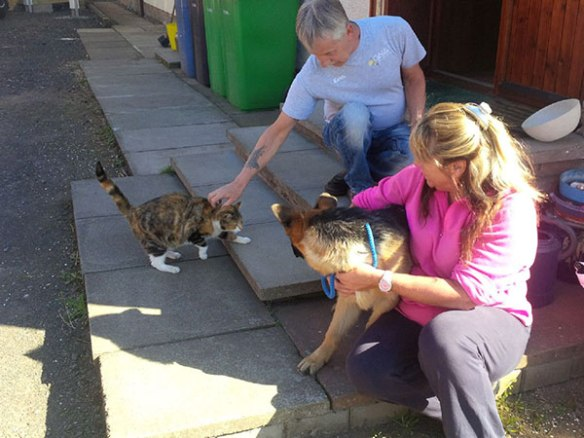 Dolly meeting resident cat Lucky