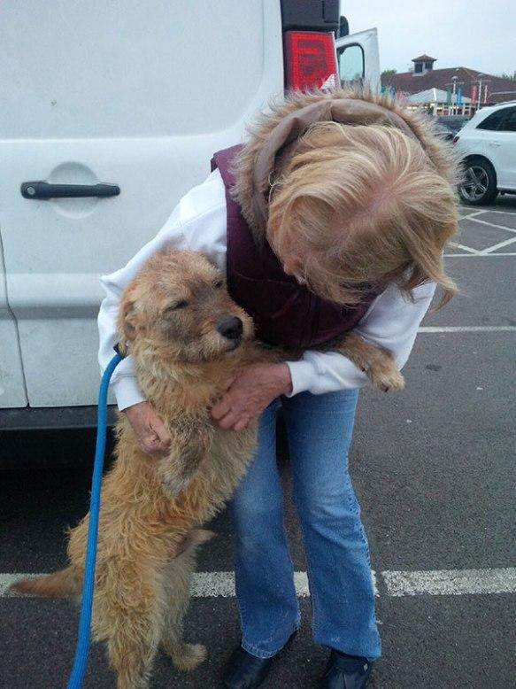 Odie meets Kate in Sussex